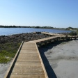 Port Aransas Nature Preserve Thumb